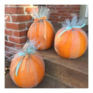 Pumpkins in Tulle